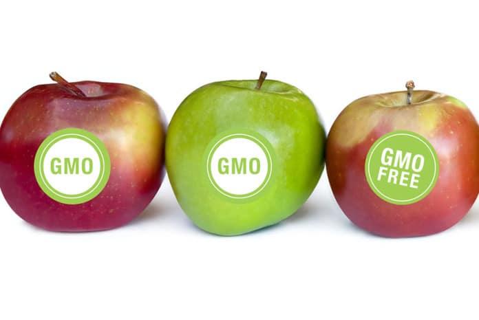 Fruta Geneticamente Modificada