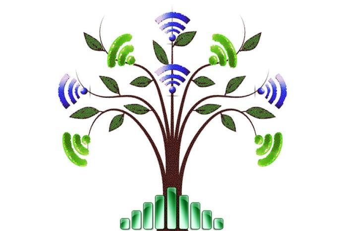 As árvores e o Wi-Fi