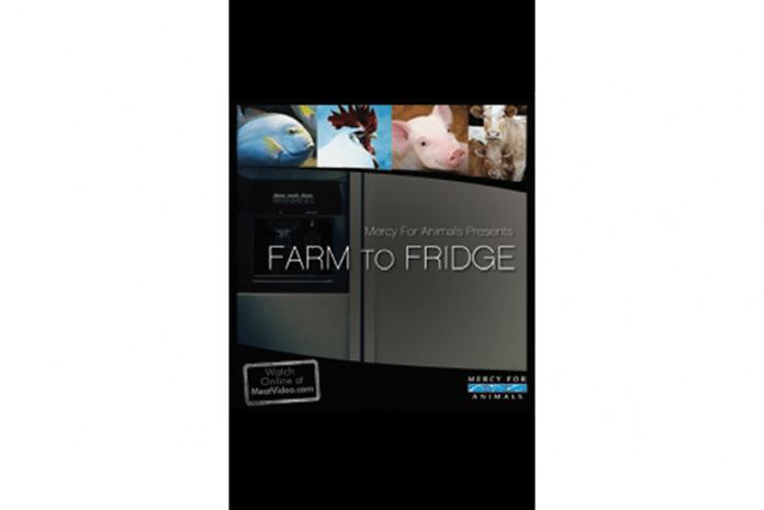 Capa da Curta Metragem: «Farm To Fridge»