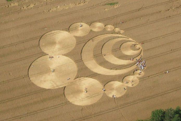 Provas sobre o Fenómeno dos círculos nas plantações