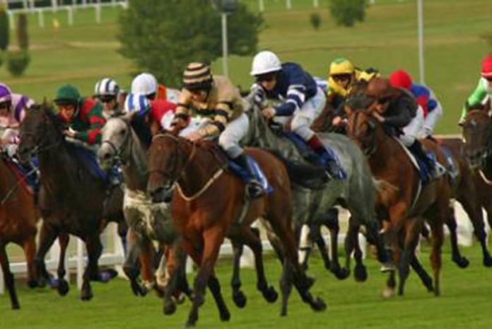 Mendiocidade nas apostas nas corridas de cavalos