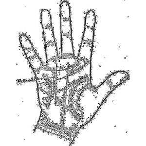 Linhas das mãos