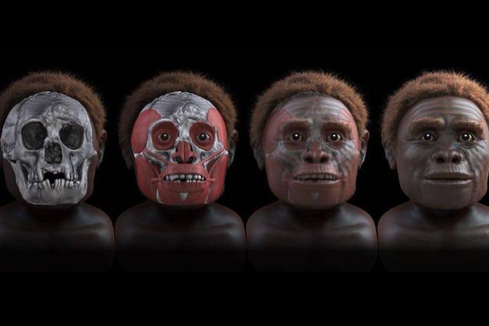 Homo floresiensis é uma espécie extinta do género Homo que viveu na Ilha das Flores - Indonésia