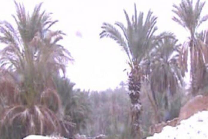 Tempestade de Neve na Argélia