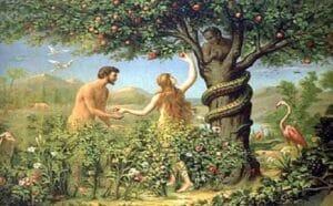 Árvore do Fruto Proíbido