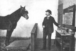 Hans, o cavalo inteligente