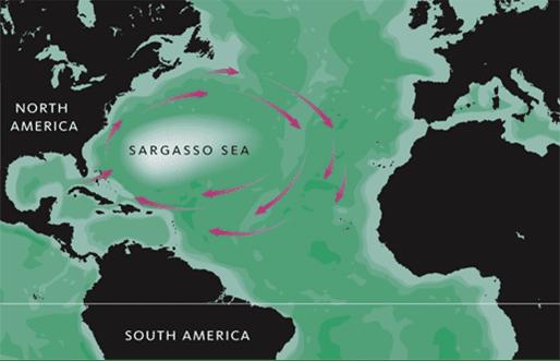 Mapa do Mar dos Sargaços