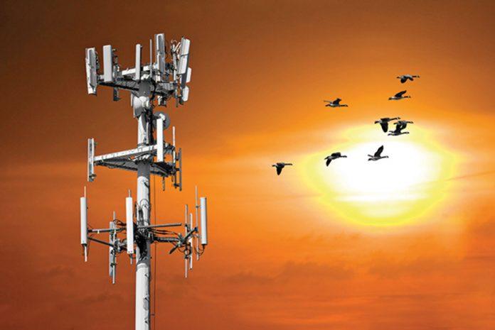 Estudo de Torre de Antenas Wireless