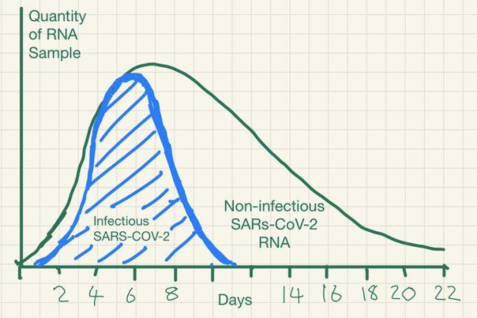 Gráfico do período de infecção COVID-19 e quantidade de RNA viral