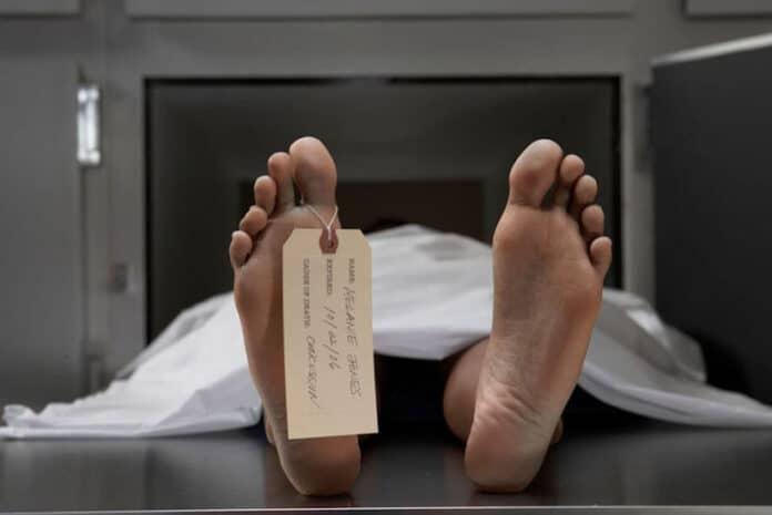 Terá havido mortalidade em excesso em 2020?